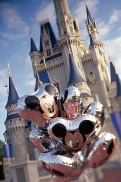 Disney Castle! I love Disney so so much and I would love to go.