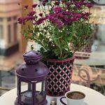 MUTLU PAZARLAR 😍😍 . . . . . . . . . . . #günaydın#goodmorning#bikahve#kahvefincanı#sabahkahvesi#kahvem#kahvekeyfi #coffeeoftheday#coffeelove#coffetime#turkishcoffee#turkkahvesi#kahvaltionemlidir#kahvaltınınmutluluklabirilgisiolmalı#homesweethome#evimevimgüzelevim#homedecor#balkoncafe#balkonkeyfi#sunumönemlidir#dekorasyonfikirleri#dekoratifurunler#dekorasyon#kahvetutkum#kahvelihane#sunumkraliçesi#keyiflisunumlar#eniyilerikeşfet#keşfet Jar, Plants, Instagram, Home Decor, Decoration Home, Room Decor, Plant, Home Interior Design, Jars