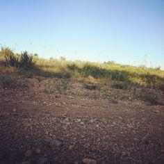 Trails No.1