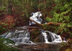 Photo by Randy Hall - Enos Creek Falls, Nanoose Bay (near Parksville, Vancouver Island) twilight also filmed in Vancouver