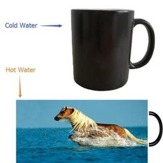 Beach Bathing Horse Color Changing Mugs