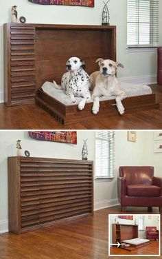 #22. Cool fold-out dog bed – Murphy Bed.