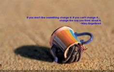 Funny pictures about Teapot crab. Oh, and cool pics about Teapot crab. Also, Teapot crab photos. Amazing Animals, Cute Animals, Wild Animals, Party Animals, Interesting Animals, Funny Animals, Hermit Crab Shells, Hermit Crabs, Hermit Crab Homes