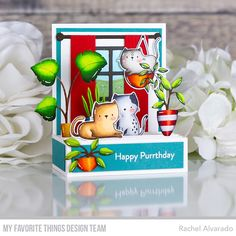 Cat Plants, Pop Up Box Cards, Interactive Cards, Handmade Tags, Mft Stamps, Cat Cards, Card Kit, Paper Gifts, Cards