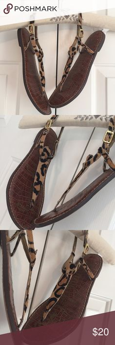 Sam Edelman Gigi Sandals The Gigi strappy sandal has calf hair in leopard print. Cushioned soles. Signature on foot bed and soles. This is a well preloved Gigi pair. Please see pictures. Most wear shows on the bottom of the shoes. Sam Edelman Shoes Sandals