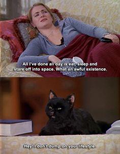 I just realized I'm Salem…