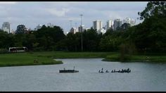 traveling to brazil - amazing place - Parque do Ibirapuera - Brazil