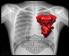 Harley Heart by BK Photography.    http://redbubble.com/people/big-keg/works/9452851-harley-heart