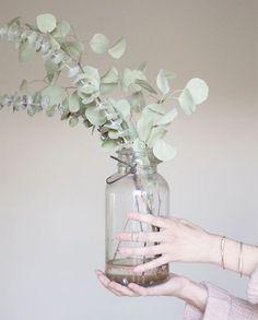 Fleurs pour mariage en été - eucalyptus