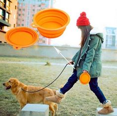 Wiggles and wags (formerly snugglezzz) offers Truelove dog walking products from the UK and includes no pull dog harnesses, collars, leads, drying coats, a leather range and Chillr cooling mats. Collapsible Dog Bowl, Cat Dog, Pet Bowls, Dog Harness, Marvel Heroes, Dog Accessories, Dog Walking, Four Legged, Pets