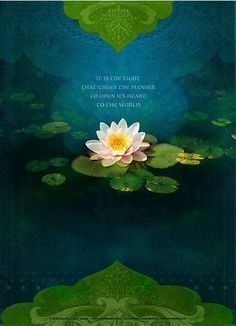"""""""It is the Light that urges the Flower to open its heart to the World"""" © http://www.ketatrading.com/Greeting-Card-Sets.html"""