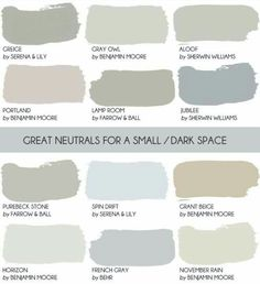 Neutrals for small dark spaces