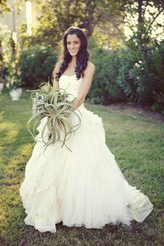 tillandsia bouquet!