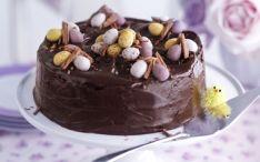 chocolate cake-102133