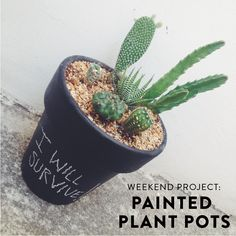 PROJECT ALABAMA Weekend Project: Painted Plant Pots