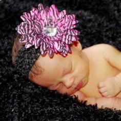 Hot Pink Zebra Daisy Flower Headband