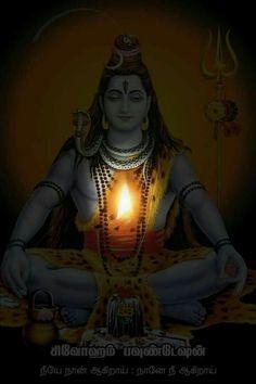 Shiva Tandav, Shiva Parvati Images, Krishna Hindu, Hanuman Images, Durga Images, Ganesh Images, Krishna Images, Photos Of Lord Shiva, Lord Shiva Hd Images