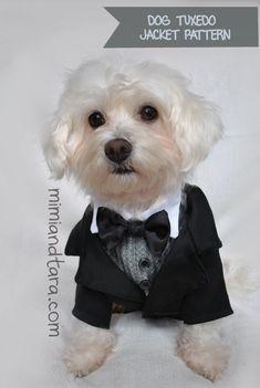 Dog Tuxedo Jacket Pattern size XS Sewing por MimiandTaraStore