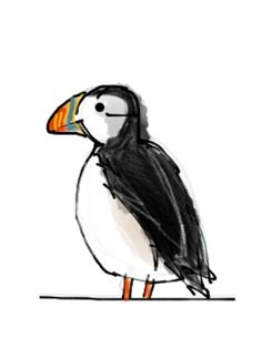 100 Crazy Puffin Facts Dessin Moine