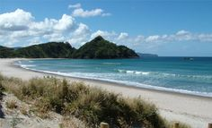 Escape to Great Barrier Island! Take a deep breath, slow down and discover this unique island with amazing sceneries (beaches, dense forest and mountains).