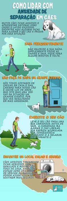 Como Lidar com Ansiedade de Separação em Cães - http://www.comotreinarumcao.com.br/ansiedade-de-separacao-em-caes