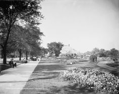 1905. Lincoln Park -- Chicago. Detroit Publishing Company.