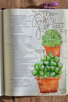 Isaiah 26:3, February 1, 2016,  carol@belleauway.com, hand lettering, watercolor, inspired by hero arts succulent stamps, bible art journaling, bible journaling, illustrated faith
