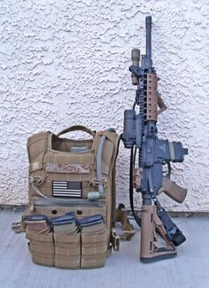 Rifle and Plate Carrier (FDE)