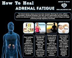 Chronic fatigue syndrome and fibromyalgia often have very similar treatments due to the fact that these two syndromes share a lot of common characteristics. If you are a chronic fatigue syndrome or fibromyalgia patient, the treatments Adrenal Fatigue Treatment, Adrenal Fatigue Symptoms, Chronic Fatigue Syndrome Diet, Adrenal Burnout, Hypothyroidism Symptoms, Underactive Thyroid, Fadiga Adrenal, Adrenal Health, Adrenal Glands