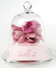 Bell Jar flower and table number for wedding beauty and the beast theme