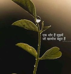 28 Ideas Happy Life Quotes Marathi For 2020 Bad Words Quotes, Shyari Quotes, Life Quotes Pictures, True Love Quotes, Strong Quotes, Sufi Quotes, Qoutes, Happy Life Quotes, Hindi Quotes On Life