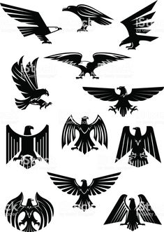 Heraldic eagle and hawk, falcon badge. Aquila with wide opened wing tattoo, bird as insignia of power and freedom, american patriotism symbol. Retro heraldry or historical culture, military or war. Eagle Icon, Eagle Art, Free Vector Graphics, Free Vector Art, Eagle Wing Tattoos, Tattoo Eagle, Historical Tattoos, Falcon Logo, Falcon Tattoo