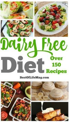 control of your dairy free diet with the ultimate list of recipes for every meal of the day!Take control of your dairy free diet with the ultimate list of recipes for every meal of the day! Lactose Free Recipes, Diet Recipes, Healthy Recipes, Cooking Recipes, Jello Recipes, Whole30 Recipes, Gluten Free, Dairy Free Meals, Dairy Free Recipes For Kids