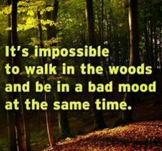 It's impossible to walk in the woods and be in a bad mood at the same time.