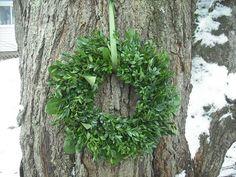 18 Boxwood and Lemonleaf wreath All natural by NHWoodscreations, $39.00