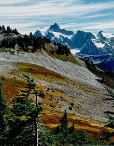 Ptarmigan ridge on Mt. Baker. My favorite hike of 2013. Go Hiking, Hiking Trails, Outdoor Life, Outdoor Camping, Camping Outdoors, Dream Vacations, Vacation Spots, Image Poetry, The Road Not Taken