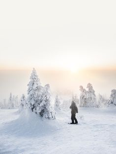 Lapland Nº2: A Photo