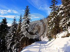 Road in winter in mountains Beskidy in Poland