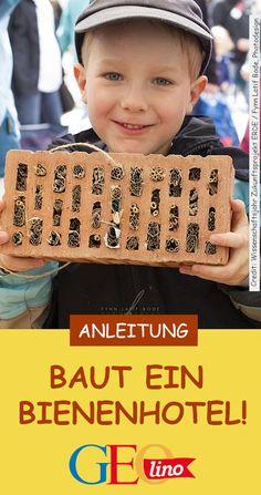 Wir zeigen euch auf GEOlino.de, wie ihr einen Bienenhotel selbst bauen könnt! #basteln #bienenhotel #insektenhotel #bienen #insekten #gartendiy #diy #selbermachen #bastelnmitkindern #gartenprojekt