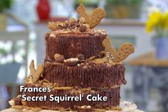 Frances Secret Squirrel Cake from The Great British Bake Off