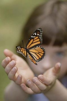 <3....I smile every time I see a butterfly because you're making sure I see them to bring Mom comfort.