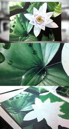 Acrylic illustration - Nicolas Lantoine #acrylic #illustration #flower #painting