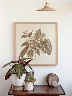 This is a composition with leaves and plants printed over a marbled square. Printed in 50cmx50cm size so you can easily fit in a standard frame.   ✄