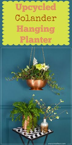 Use a colander as a hanging planter ~ you could keep them as is or spray paint them to complement your decor.