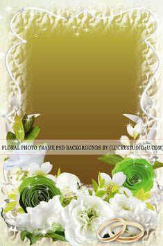 Floral Photo Frame Psd Backgrounds Download