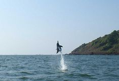 Goa: Dolphin Boat Safari Tour with Sightseeing Simple Boat, Cruise Packages, Portuguese Culture, Best Boats, Parasailing, Island Tour, Adventure Activities, Water Activities, Tourist Places