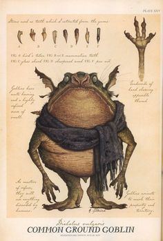 This is a Common Ground Goblin | He is a Diabolus vulgaris | This is what's written in Arthur Spiderwick's Field Guide to the Fantastical World Around You about Goblins.