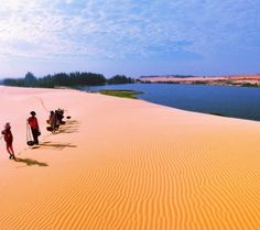Tourists can easily be attracted by the goldern of the sun and sand in Muine Vietnam