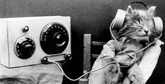 Día Mundial de la Radio 2014 hoy 13 de febrero según la UNESCO
