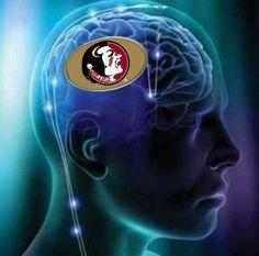 FSU on my brain 24/7
